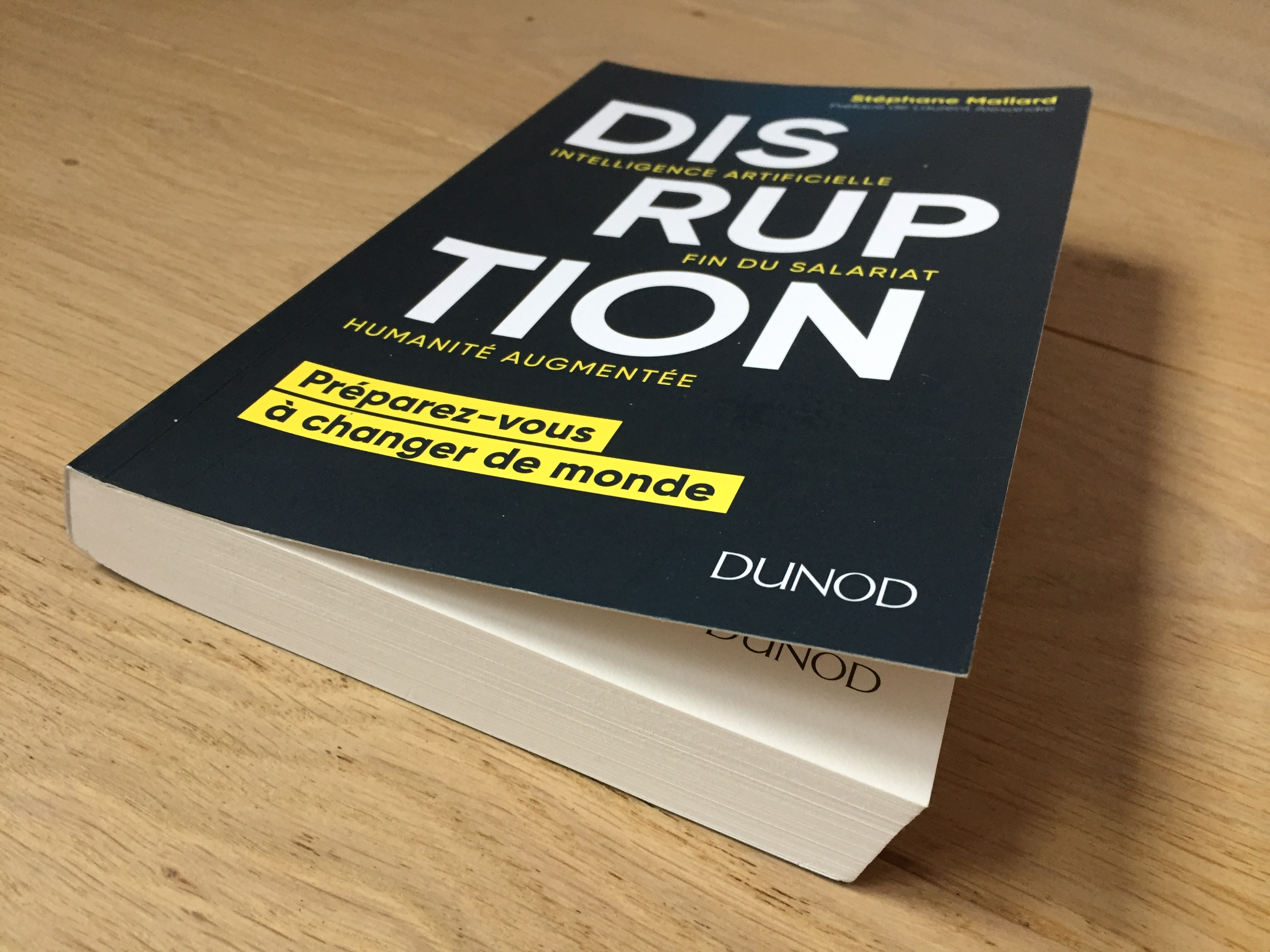 Couverture Disruption Stéphane Mallard